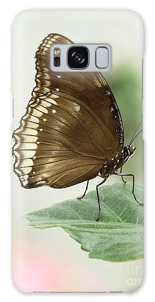 Great Eggfly Butterfly Galaxy Case by Judy Whitton
