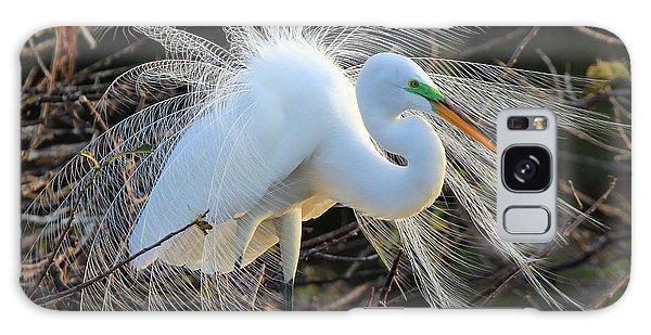 Great Egret Show Off Galaxy Case