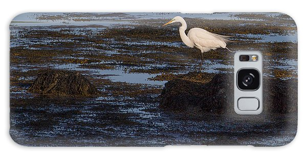 Great Egret At Avery Point Galaxy Case