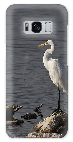 Great Egret Galaxy Case