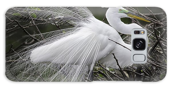 Great Egret Preening Galaxy Case