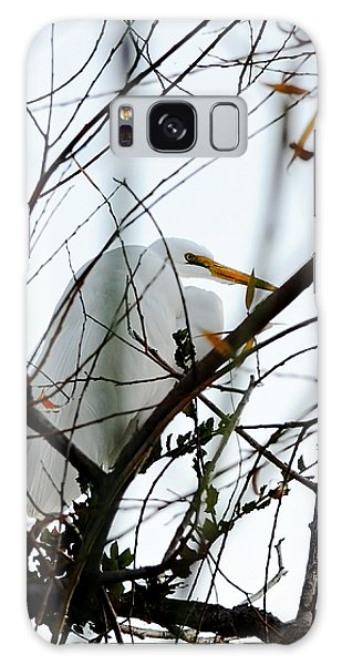 Great Egret Roosting In Winter Galaxy Case