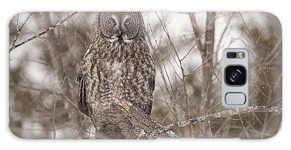 Great Grey Owl Galaxy Case by Eunice Gibb
