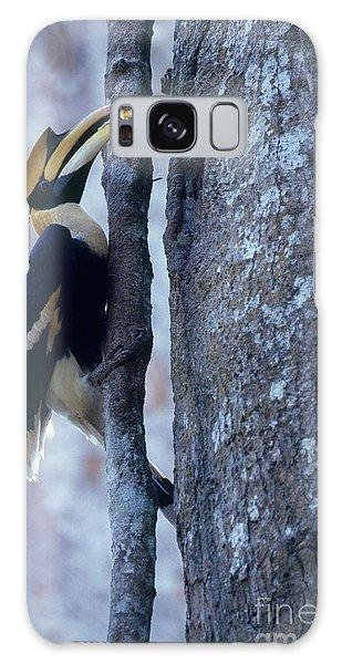 Great Hornbill Galaxy Case by Art Wolfe