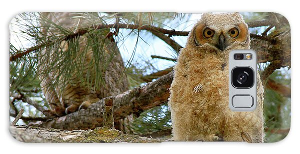 Great Horned Owls Galaxy Case