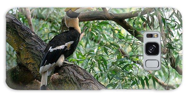 Great Indian Hornbill Galaxy Case by Art Wolfe