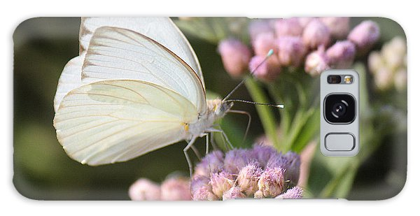 Great Southern White Butterfly On Pink Flowers Galaxy Case