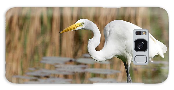 Great White Egret By The River Galaxy Case