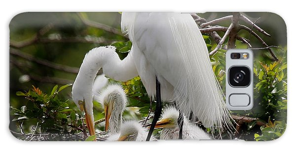 Great White Egret Nesting Galaxy Case by Joseph G Holland