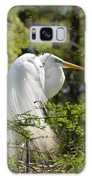 Great White Egret On Nest Galaxy Case