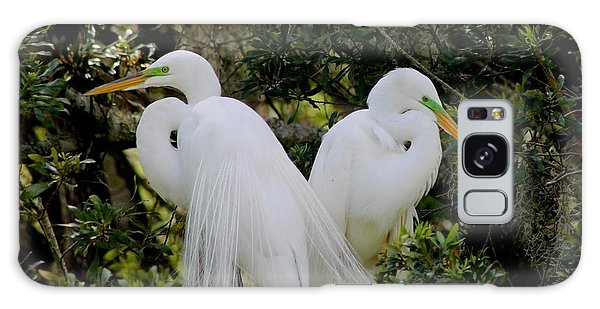 Great White Egret Pair In Breeding Plumage Galaxy Case