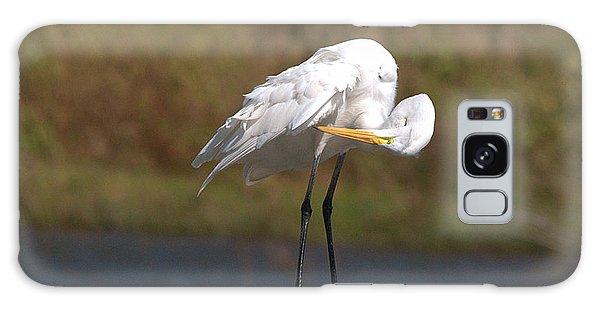 Great White Egret Preening Galaxy Case