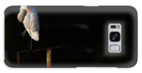 Great White Evening Galaxy Case