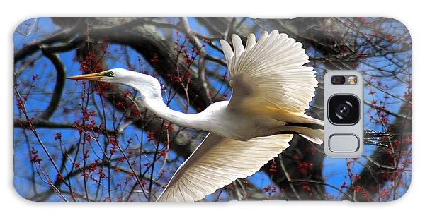 Great White Heron Islip New York Galaxy Case
