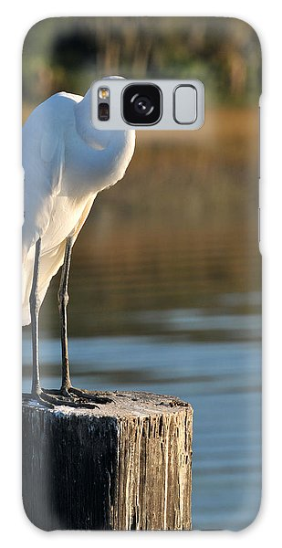 Great White Heron Galaxy Case
