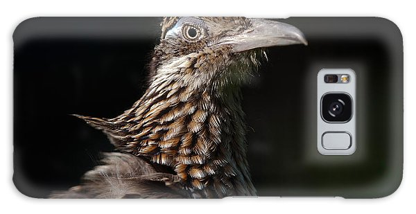 Greater Roadrunner Galaxy Case - Greater Roadrunner by Thomas Gehrke