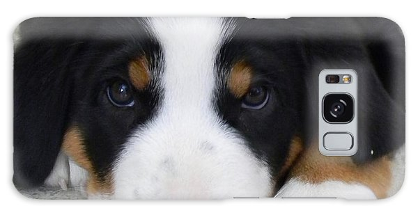 Greater Swiss Mountain Dog Galaxy Case