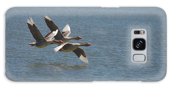 Greater White-fronted Geese In Flight Series 4 Galaxy Case
