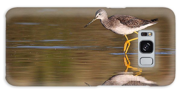 Greater Yellow Legs Galaxy Case by Ruth Jolly