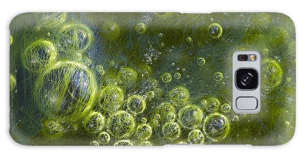 Green Algae Bubbles In Creek Galaxy Case
