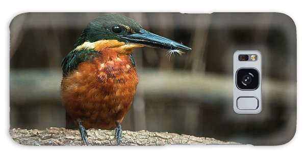 Green And Rufous Kingfisher Galaxy Case