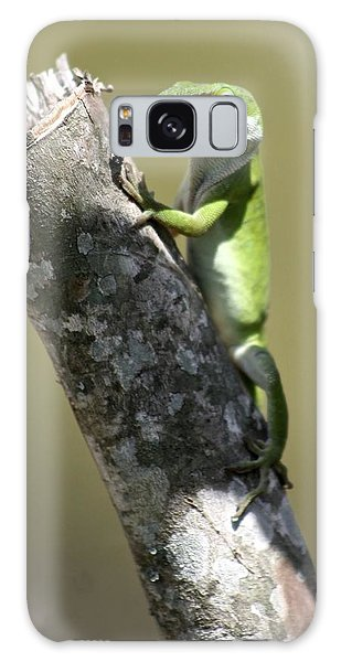 Green Anole Ready For Lunch Galaxy Case by Jeanne Kay Juhos