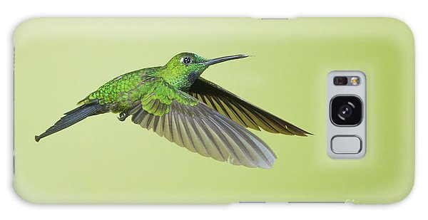 Green-crowned Brilliant Hummingbird Galaxy Case