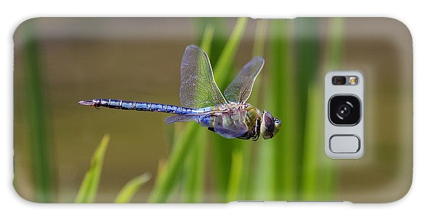Green Darner Flight Galaxy Case by David Lester