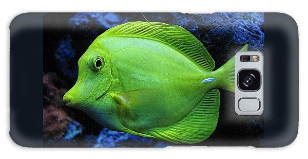 Green Fish Galaxy Case