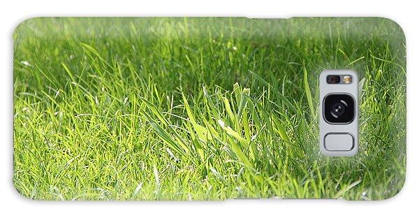 Green Grass Galaxy Case