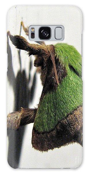 Green Hair Moth Galaxy Case
