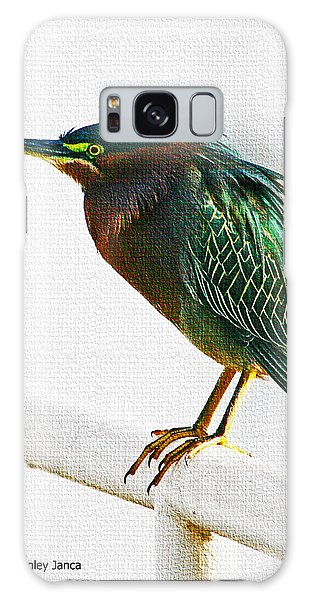 Green Heron In Scottsdale Galaxy Case by Tom Janca
