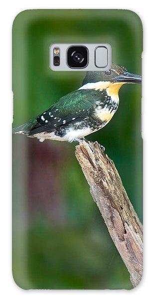 Green Kingfisher Chloroceryle Galaxy Case