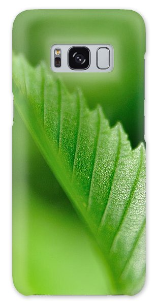 Green Leaf 002 Galaxy Case by Todd Soderstrom