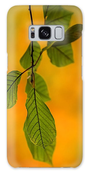 Green Leaves In Autumn Galaxy Case