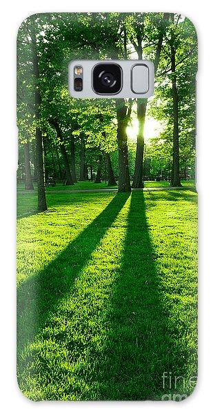 Sun Galaxy Case - Green Park by Elena Elisseeva