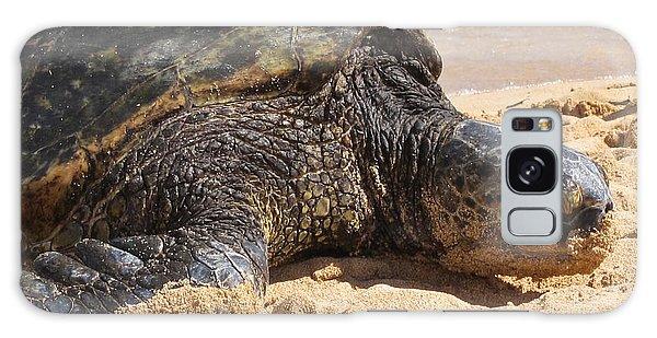 Green Sea Turtle 2 - Kauai Galaxy Case