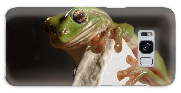 Green Tree Frog Keeping An Eye On You Galaxy Case