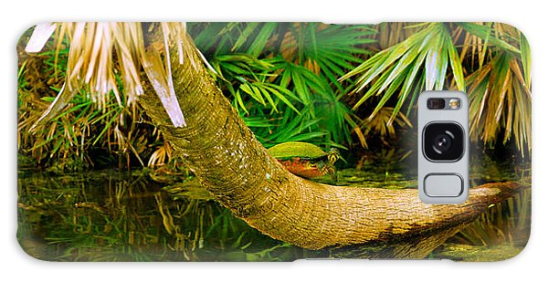 Boynton Galaxy Case - Green Turtle Chelonia Mydas In A Pond by Panoramic Images