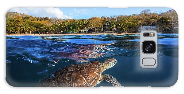 Turtle Galaxy Case - Green Turtle - Sea Turtle by Barathieu Gabriel