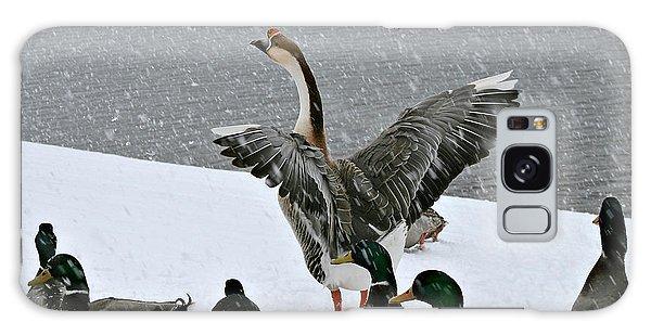 Green Valley Ducks Galaxy Case