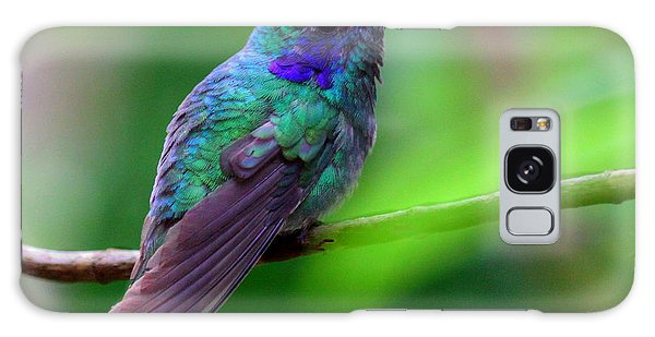 Green Violet Ear Hummingbird Galaxy Case
