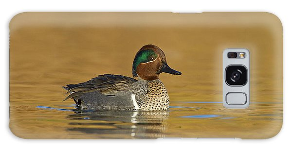 Green Wing Teal Galaxy Case