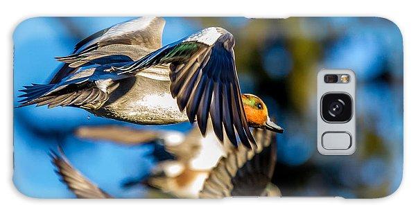 Green-winged Teal Duck In Flight Galaxy Case