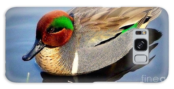 Green Winged Teal  Duck  Galaxy Case by Susan Garren