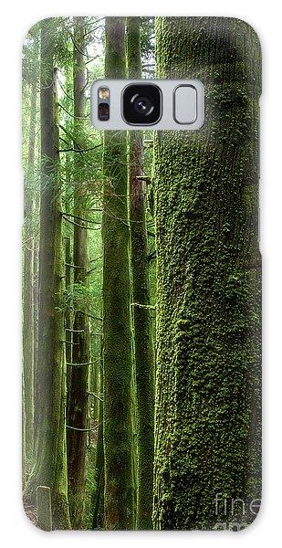 Green Wood Galaxy Case