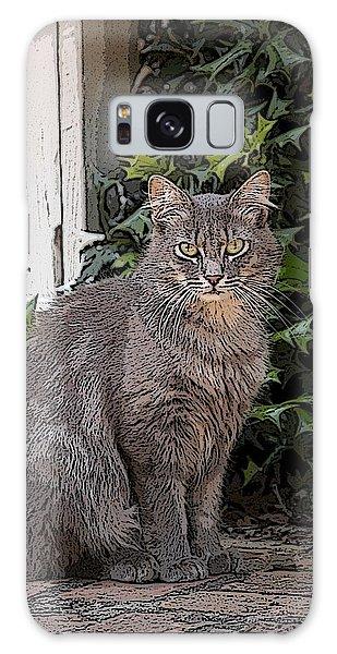 Grey Cat Galaxy Case