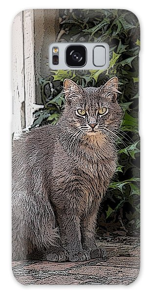 Grey Cat Galaxy Case by Donald Williams