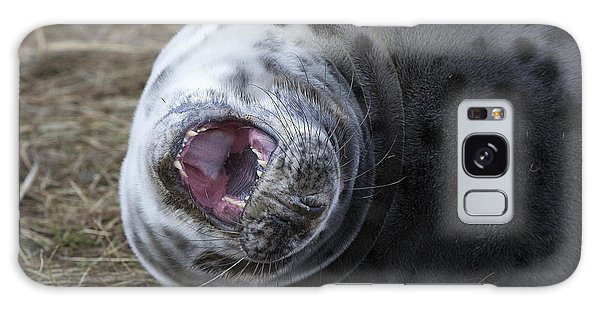 Grey Seal Pup Yawning Galaxy Case