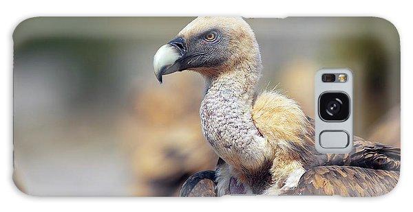 Griffon Galaxy Case - Griffon Vulture by Nicolas Reusens